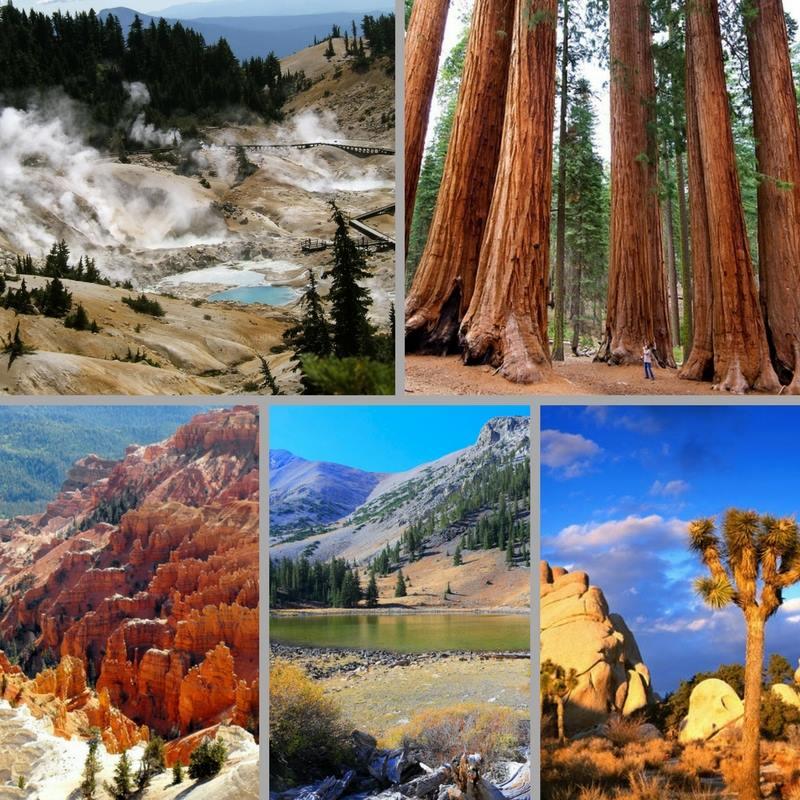 Beeld bij Nationale Parken in USA