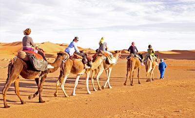Foto kameelreis bij GROUPES en INCENTIVES